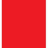 Multilingual Accessibility services icon